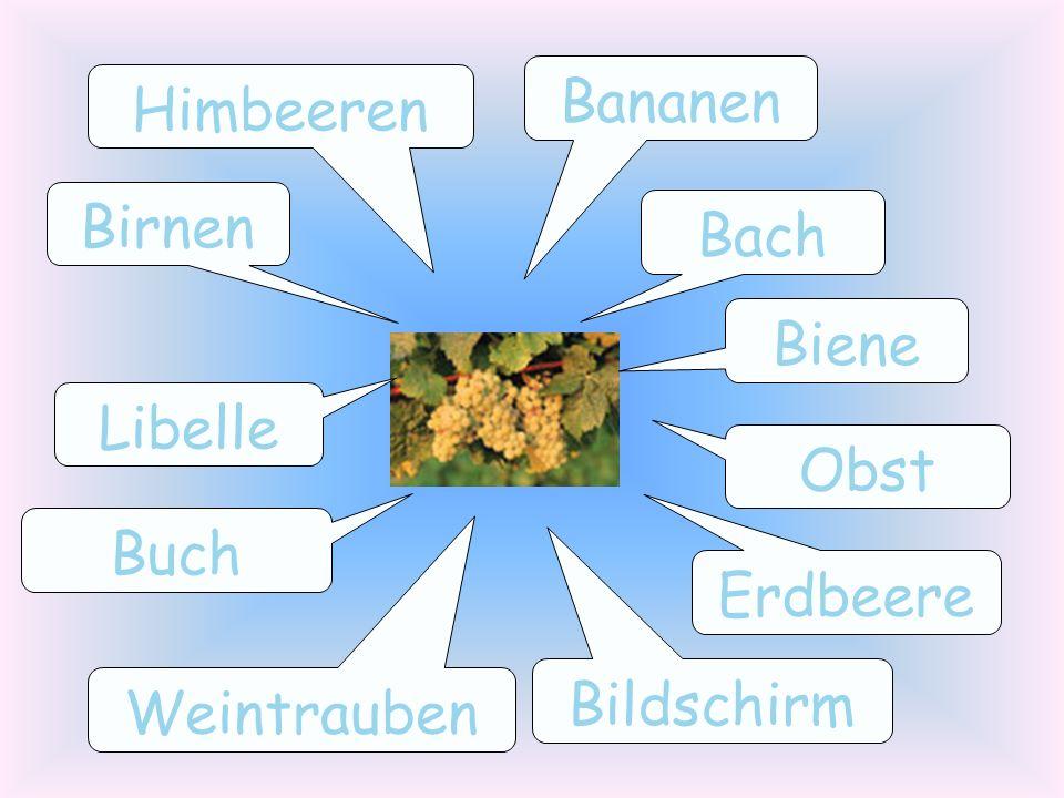 Bach Erdbeere Birnen Himbeeren Libelle Bildschirm Obst Bananen Weintrauben Buch Biene
