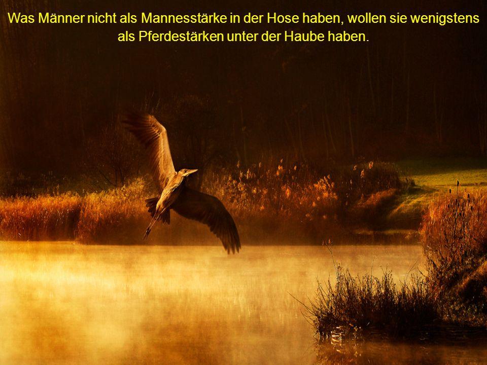 Das beliebteste Haustier der Deutschen ist und bleibt das halbe Hähnchen.