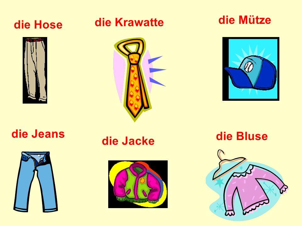 die Hose die Jeans die Jacke die Krawatte die Mütze die Bluse