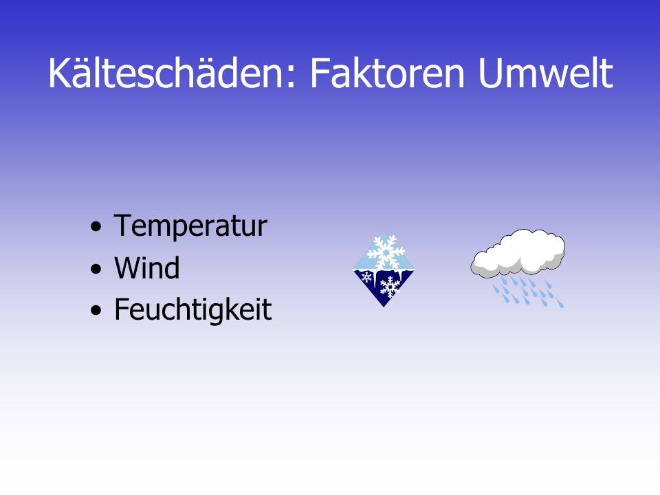 Kälteschäden: Faktoren Umwelt Temperatur Wind Feuchtigkeit