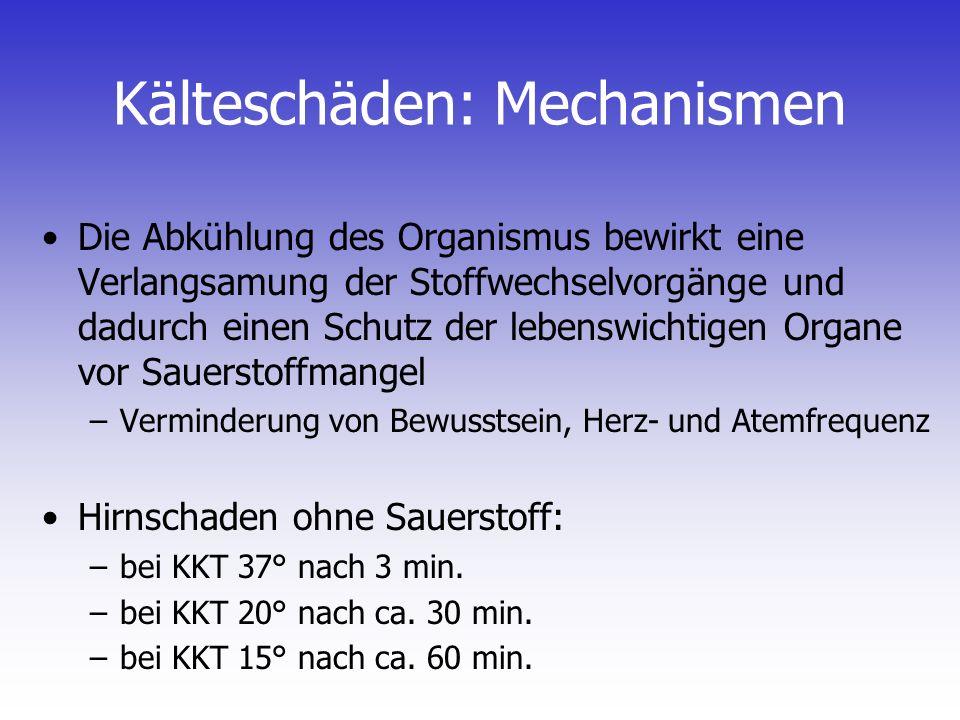 Kern-Schale-Prinzip Erhaltung der Wärme im Zentrum (Kern) des Körpers (Zentralisation) Abkühlung der oberflächlichen Rumpfschichten und der Extremitäten (Schale) Mechanismus: Gefässengstellung