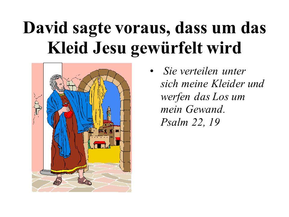 David sagte voraus, dass um das Kleid Jesu gewürfelt wird Sie verteilen unter sich meine Kleider und werfen das Los um mein Gewand. Psalm 22, 19