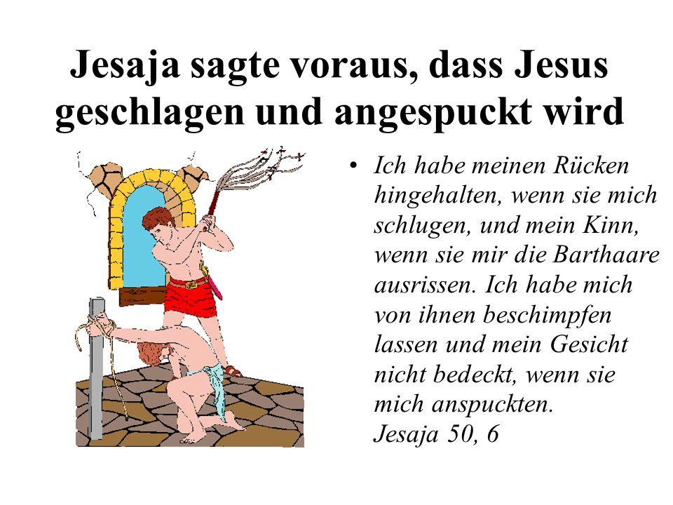 Jesaja sagte voraus, dass Jesus geschlagen und angespuckt wird Ich habe meinen Rücken hingehalten, wenn sie mich schlugen, und mein Kinn, wenn sie mir