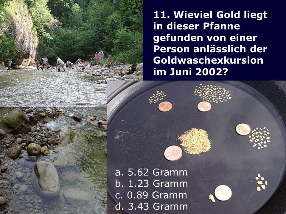 11. Wieviel Gold liegt in dieser Pfanne gefunden von einer Person anlässlich der Goldwaschexkursion im Juni 2002? a. 5.62 Gramm b. 1.23 Gramm c. 0.89