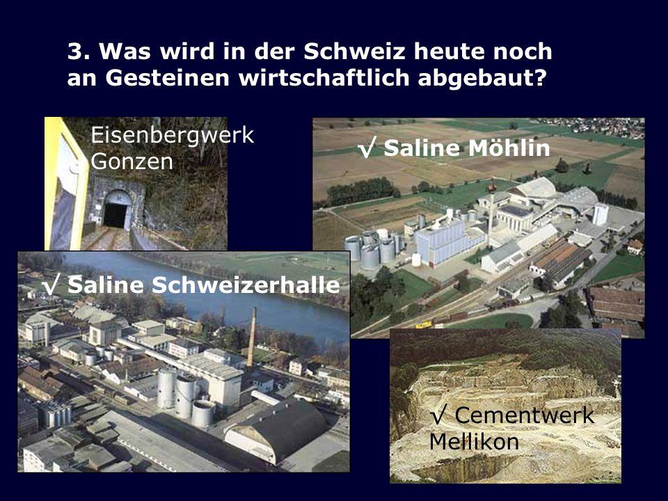 3. Was wird in der Schweiz heute noch an Gesteinen wirtschaftlich abgebaut? a. Eisen b. Diamant c. Kalk d. Salz Saline Möhlin Cementwerk Mellikon Eise