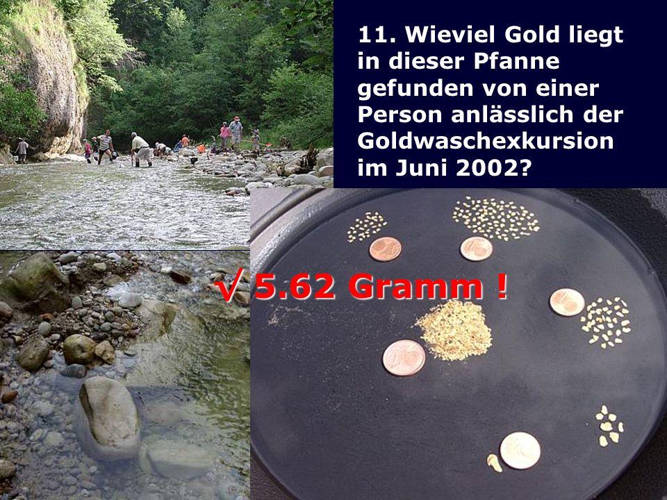 11. Wieviel Gold liegt in dieser Pfanne gefunden von einer Person anlässlich der Goldwaschexkursion im Juni 2002? 5.62 Gramm ! 5.62 Gramm !