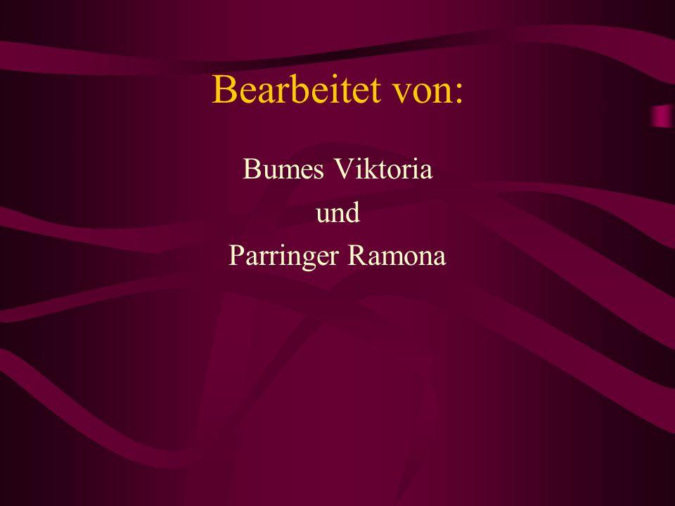 Bearbeitet von: Bumes Viktoria und Parringer Ramona