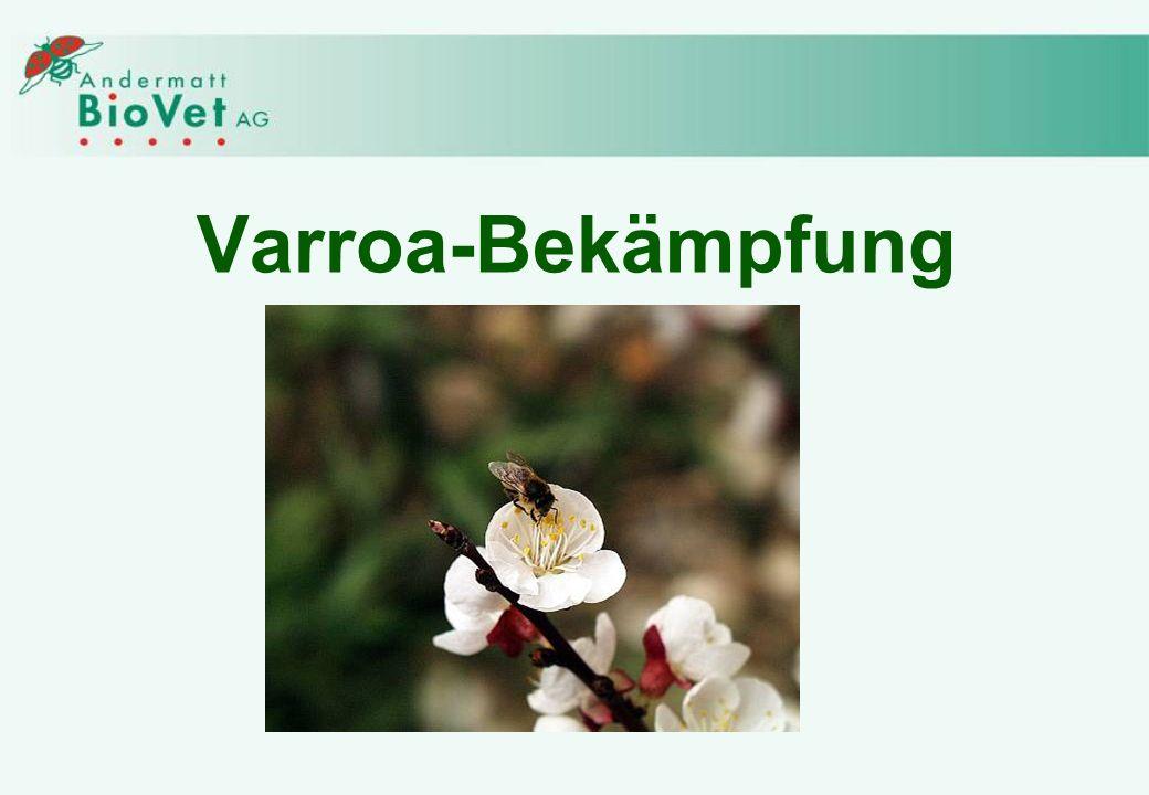 Varroa-Bekämpfung
