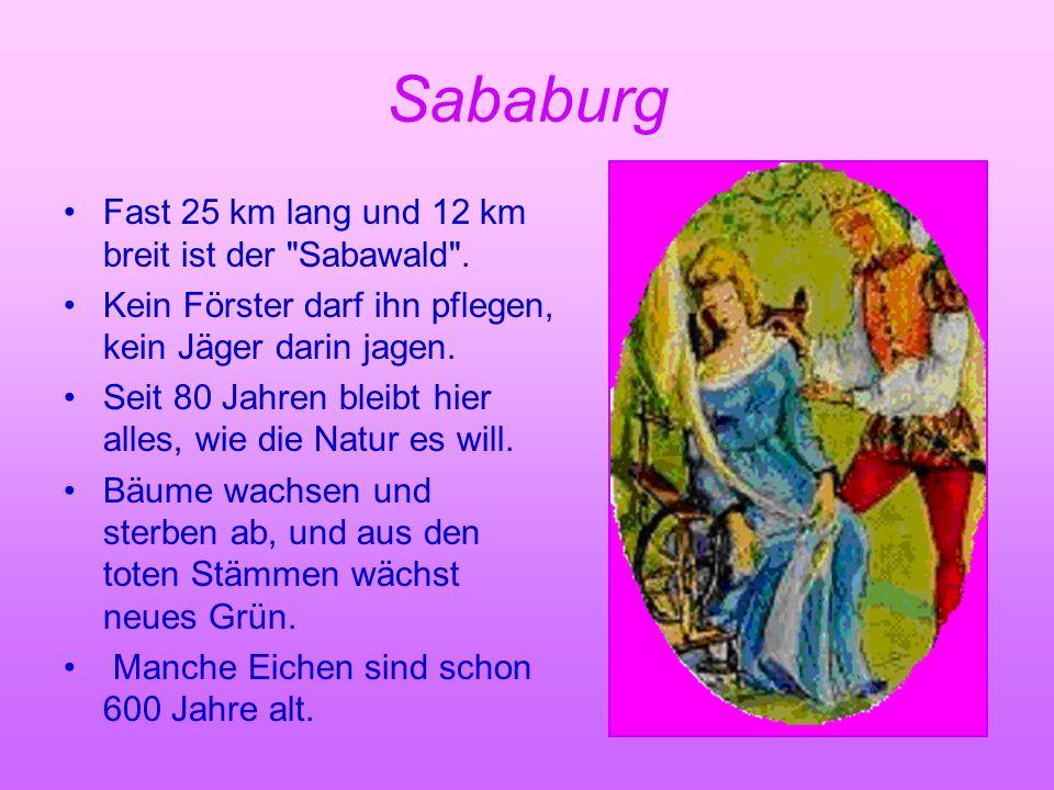 Sababurg Fast 25 km lang und 12 km breit ist der