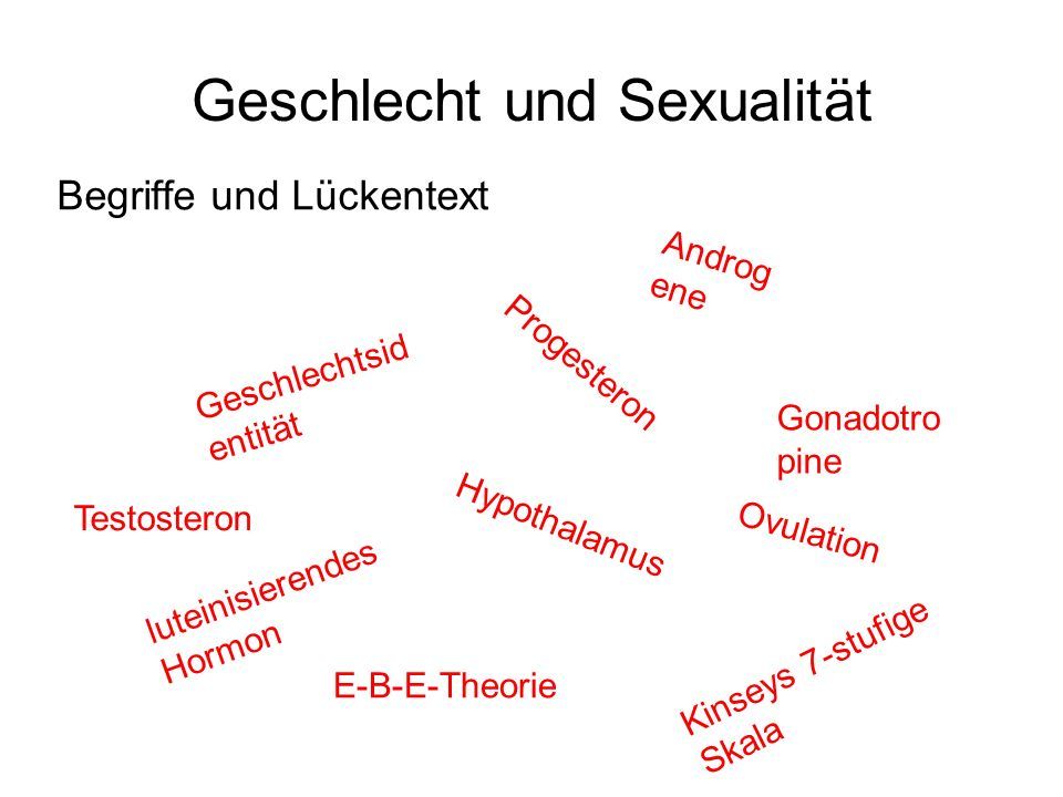 Geschlecht und Sexualität Begriffe und Lückentext Progesteron Hypothalamus Kinseys 7-stufige Skala E-B-E-Theorie Gonadotro pine Androg ene Testosteron
