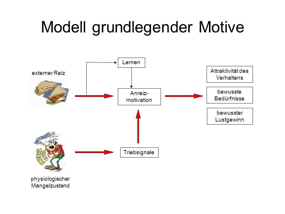 Modell grundlegender Motive externer Reiz Anreiz- motivation Lernen physiologischer Mangelzustand Triebsignale bewusste Bedürfnisse Attraktivität des