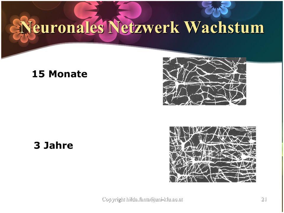 Neuronales Netzwerk Wachstum Copyright hilda.fanta@uni-klu.ac.at21