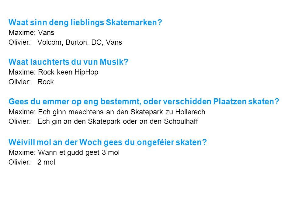 Waat sinn deng lieblings Skatemarken? Maxime: Vans Olivier: Volcom, Burton, DC, Vans Waat lauchterts du vun Musik? Maxime: Rock keen HipHop Olivier: R
