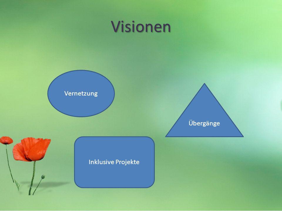Visionen Vernetzung Übergänge Inklusive Projekte