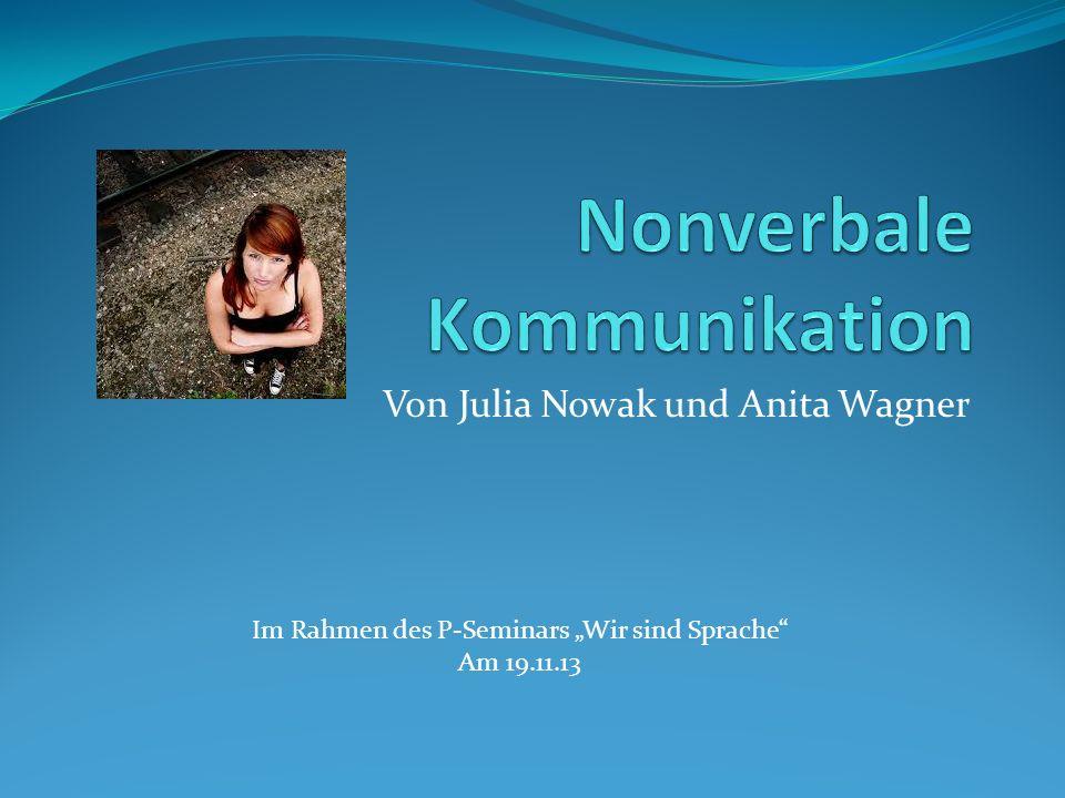 Von Julia Nowak und Anita Wagner Im Rahmen des P-Seminars Wir sind Sprache Am 19.11.13