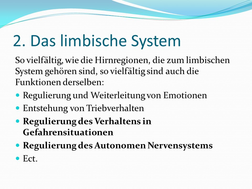 2. Das limbische System So vielfältig, wie die Hirnregionen, die zum limbischen System gehören sind, so vielfältig sind auch die Funktionen derselben: