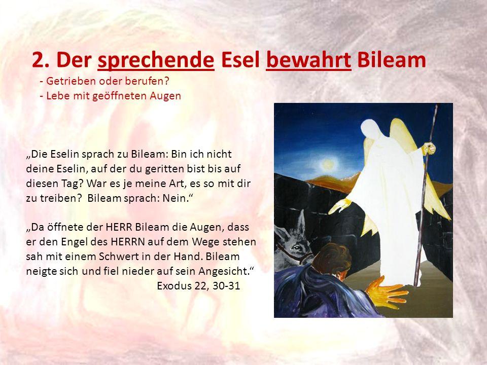 2. Der sprechende Esel bewahrt Bileam - Getrieben oder berufen? - Lebe mit geöffneten Augen Die Eselin sprach zu Bileam: Bin ich nicht deine Eselin, a