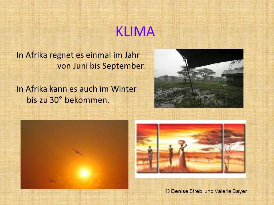 KLIMA In Afrika regnet es einmal im Jahr von Juni bis September. In Afrika kann es auch im Winter bis zu 30° bekommen. © Denise Strebl und Valerie Bay