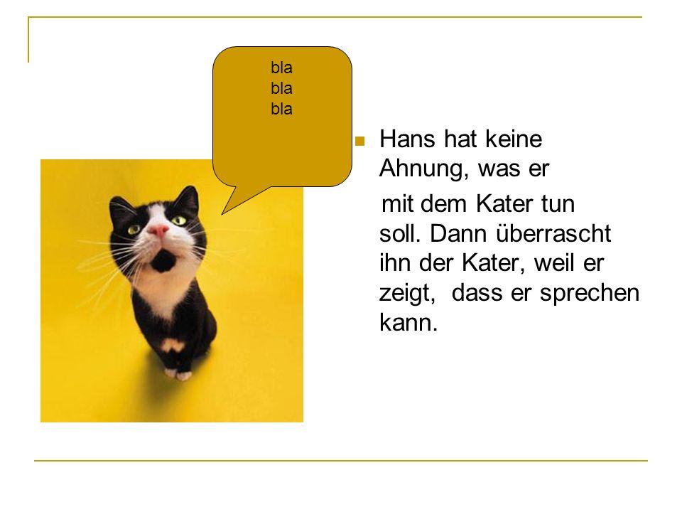 Hans hat keine Ahnung, was er mit dem Kater tun soll. Dann überrascht ihn der Kater, weil er zeigt, dass er sprechen kann. bla
