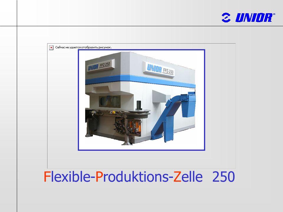 Facts / FPZ-250 Maschinenkonstruktion Konstruiert und gebaut nach Euro- Normen FPZ- 250 Robust gebaut Maschine als Funktionseinheit sehr gute Zugänglichkeit leichter Service