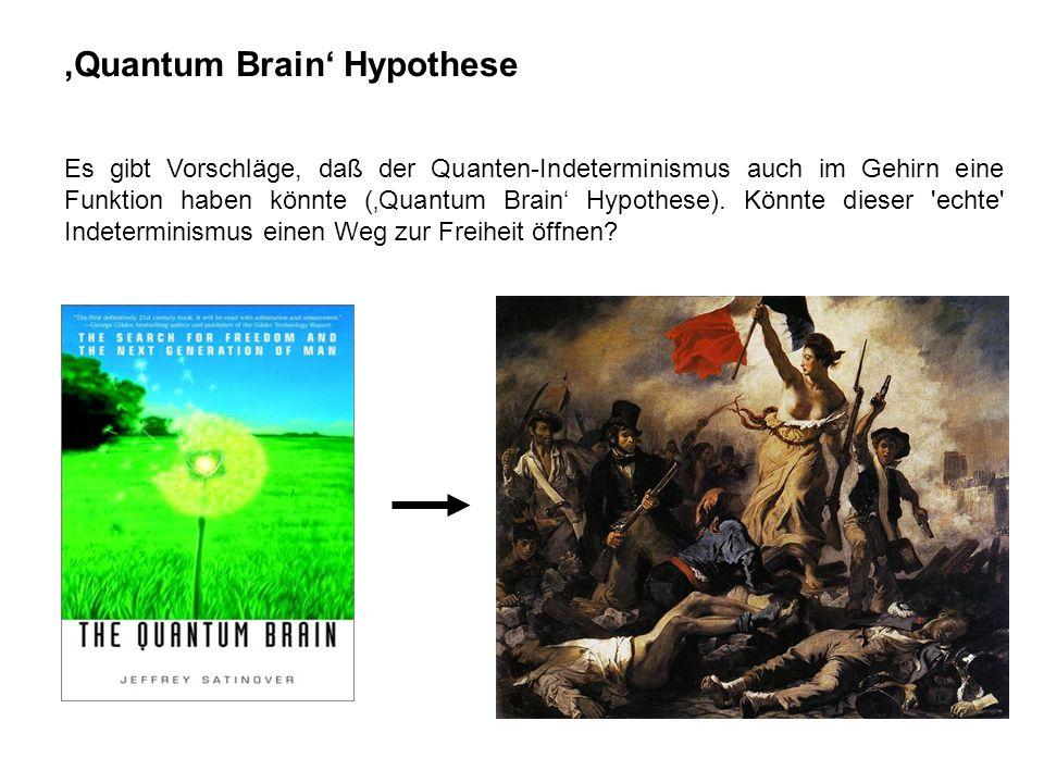Quantum Brain Hypothese Es gibt Vorschläge, daß der Quanten-Indeterminismus auch im Gehirn eine Funktion haben könnte (Quantum Brain Hypothese). Könnt