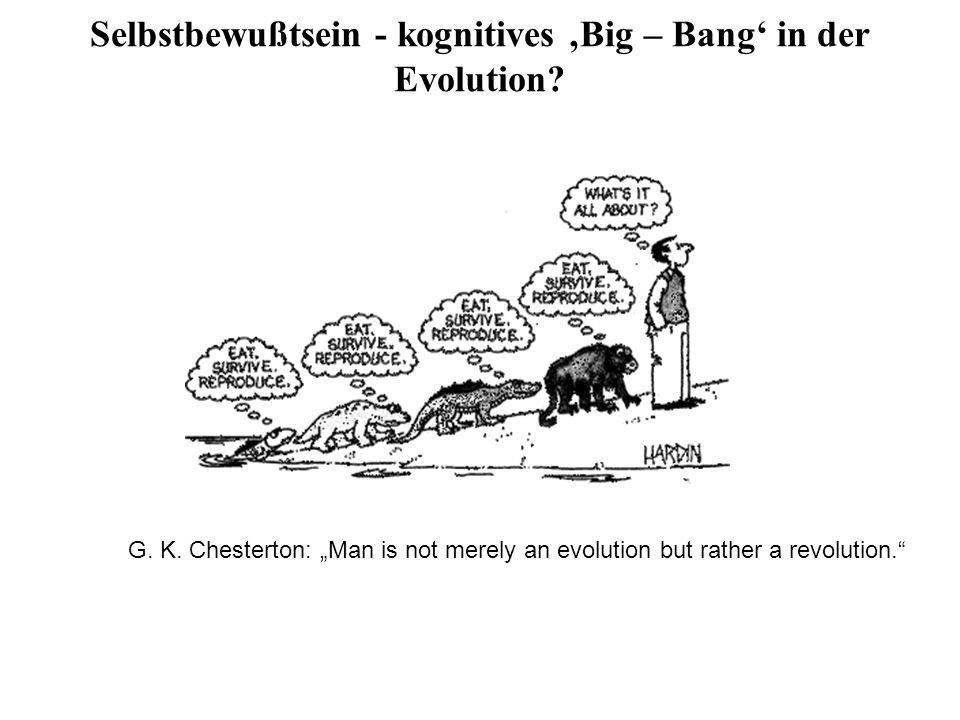 Selbstbewußtsein - kognitives Big – Bang in der Evolution? G. K. Chesterton: Man is not merely an evolution but rather a revolution.
