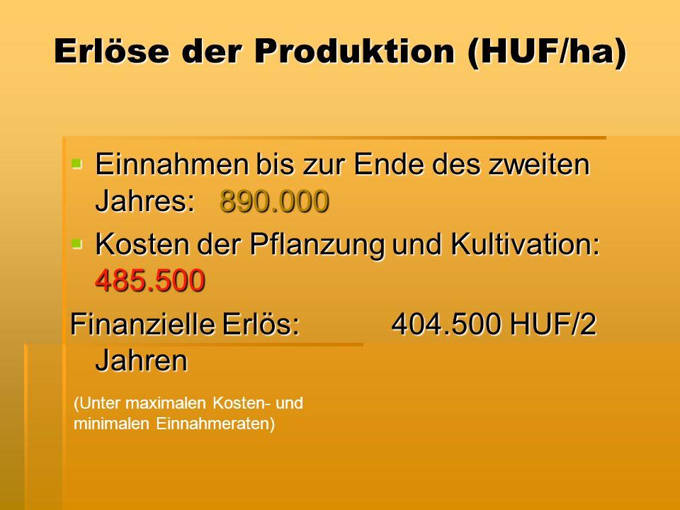 Erlöse der Produktion (HUF/ha) Einnahmen bis zur Ende des zweiten Jahres: 890.000 Einnahmen bis zur Ende des zweiten Jahres: 890.000 Kosten der Pflanzung und Kultivation: 485.500 Kosten der Pflanzung und Kultivation: 485.500 Finanzielle Erlös: 404.500 HUF/2 Jahren (Unter maximalen Kosten- und minimalen Einnahmeraten)