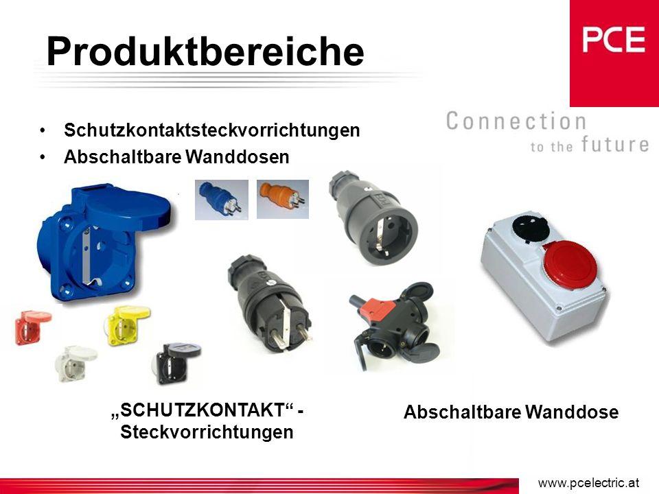 Produktbereiche komplettes Sortiment an Industriesteck- vorrichtungen nach IEC 60309 von 16A bis 125A Stecker Kupplungen Anbausteckdosen