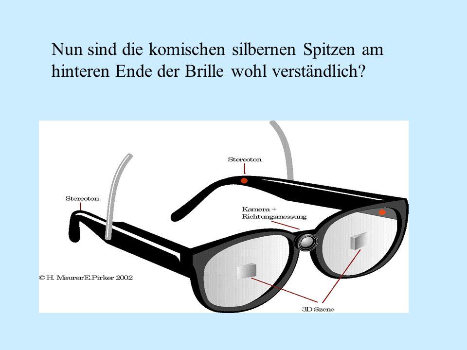 Nun sind die komischen silbernen Spitzen am hinteren Ende der Brille wohl verständlich?