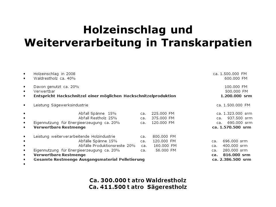 Holzeinschlag in Transkarpatien zur Zeit Veraltetet Technik Wenig bzw.