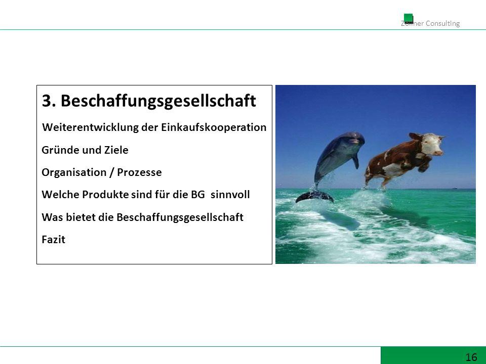 16 Zöllner Consulting 3. Beschaffungsgesellschaft Weiterentwicklung der Einkaufskooperation Gründe und Ziele Organisation / Prozesse Welche Produkte s