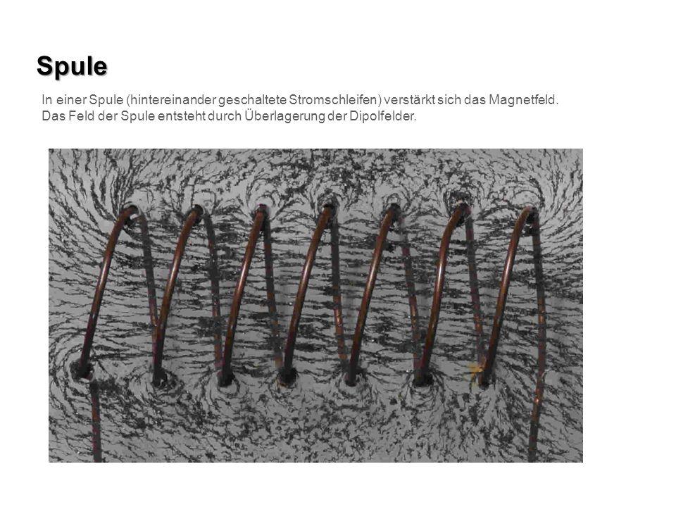 Spule In einer Spule (hintereinander geschaltete Stromschleifen) verstärkt sich das Magnetfeld.
