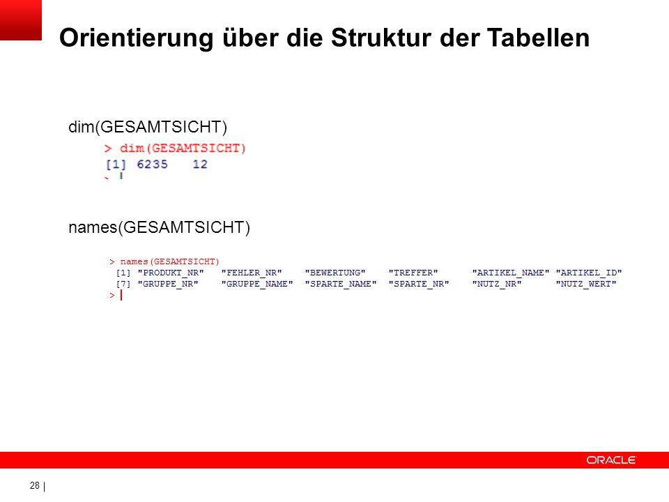 28 Orientierung über die Struktur der Tabellen dim(GESAMTSICHT) names(GESAMTSICHT)