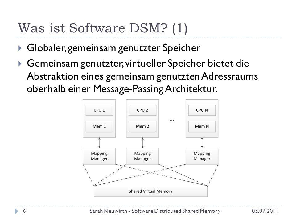 Was ist Software DSM.