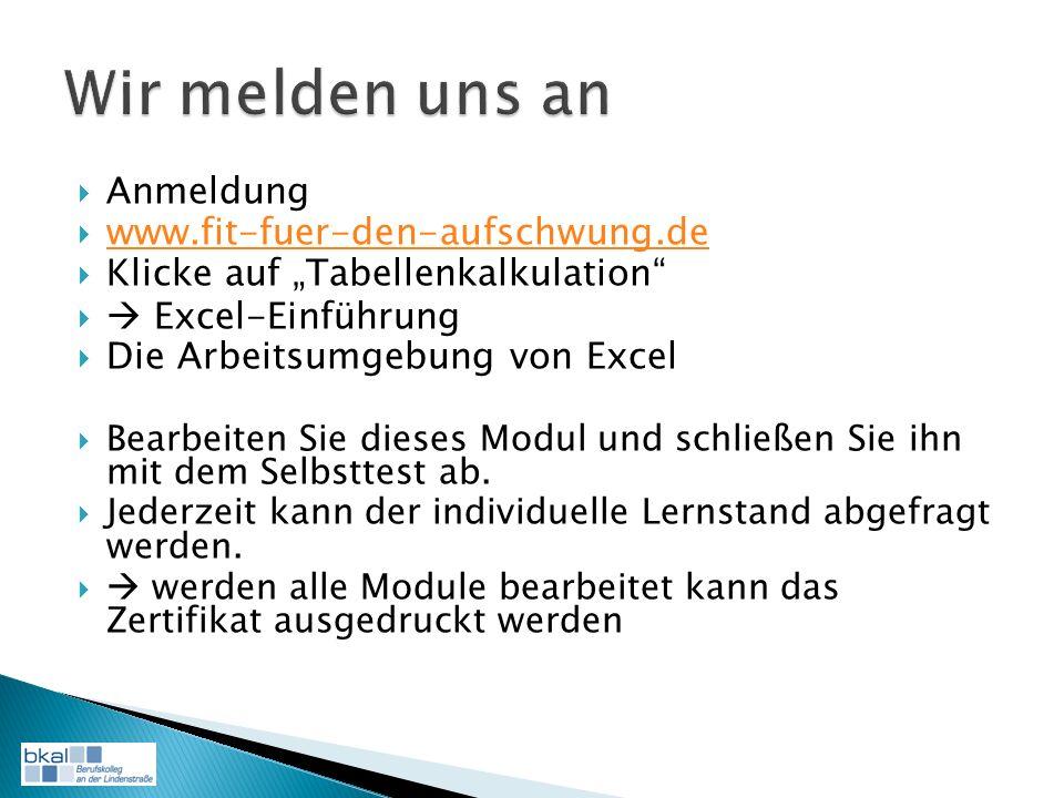 Anmeldung www.fit-fuer-den-aufschwung.de Klicke auf Tabellenkalkulation Excel-Einführung Die Arbeitsumgebung von Excel Bearbeiten Sie dieses Modul und schließen Sie ihn mit dem Selbsttest ab.