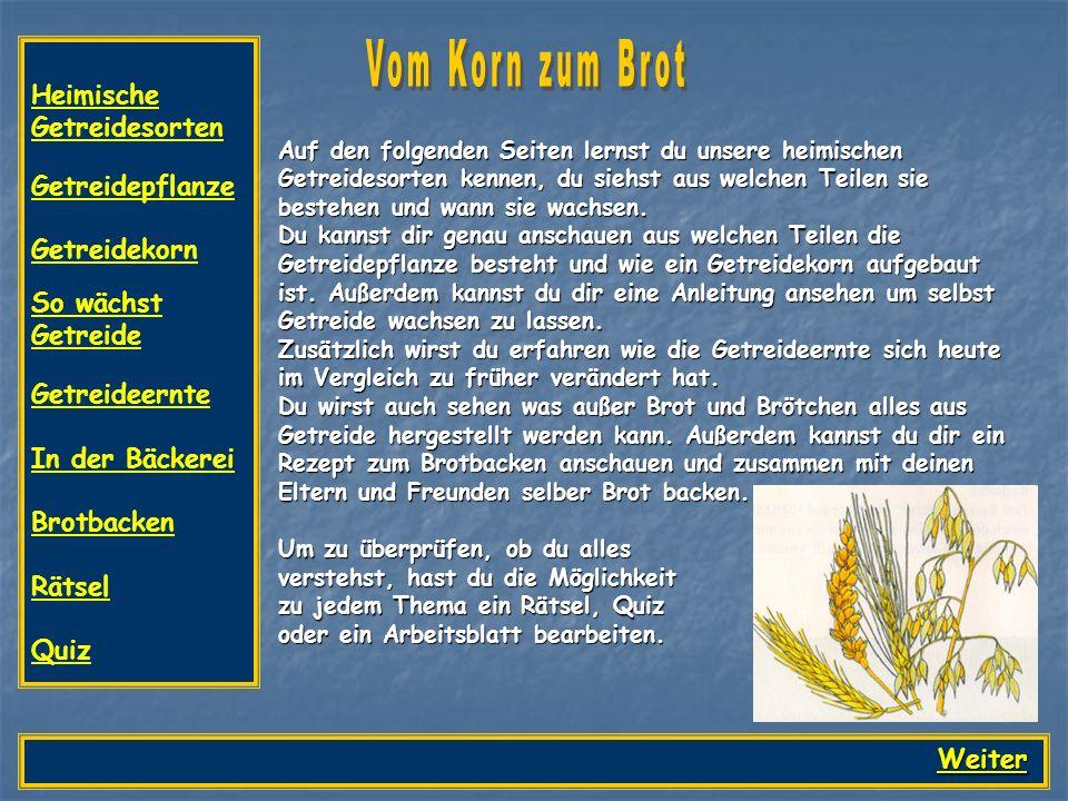 Weizen Hafer Roggen Gerste Mais Die wichtigsten Getreidesorten bei uns sind Weizen, Roggen, Hafer, Gerste und Mais.