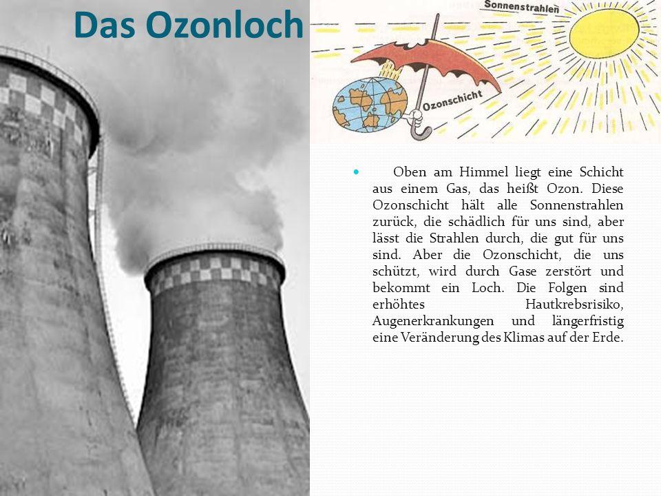 Das Ozonloch Oben am Himmel liegt eine Schicht aus einem Gas, das heißt Ozon. Diese Ozonschicht hält alle Sonnenstrahlen zurück, die schädlich für uns