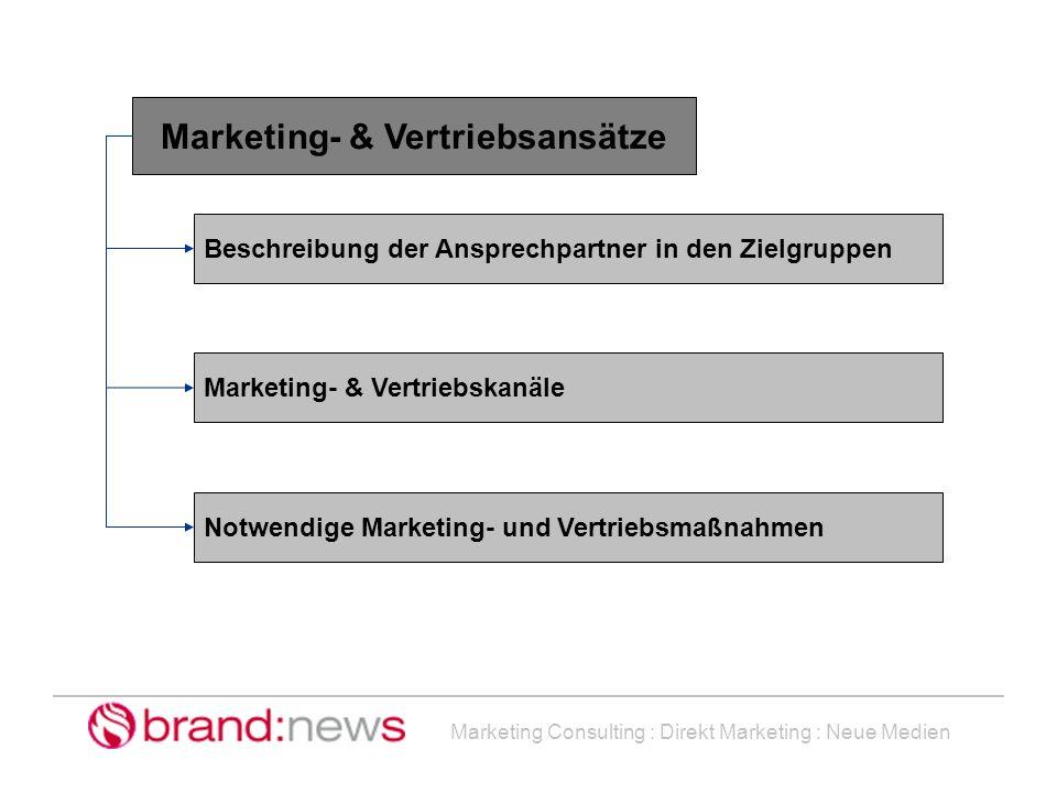 Marketing Consulting : Direkt Marketing : Neue Medien Marketing- & Vertriebsansätze Beschreibung der Ansprechpartner in den Zielgruppen Marketing- & V
