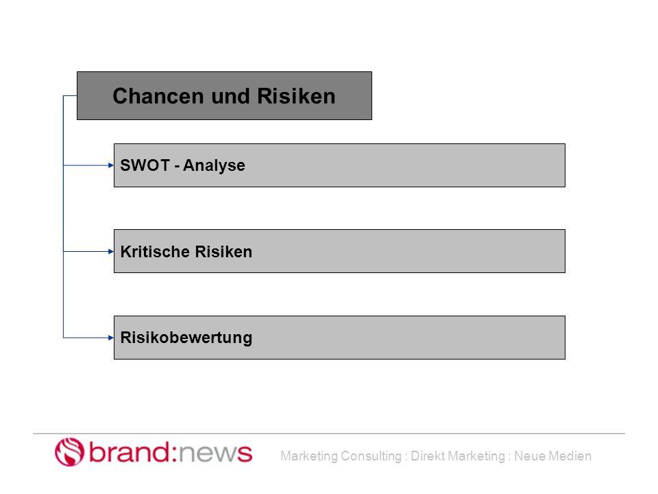 Marketing Consulting : Direkt Marketing : Neue Medien Chancen und Risiken SWOT - Analyse Kritische Risiken Risikobewertung