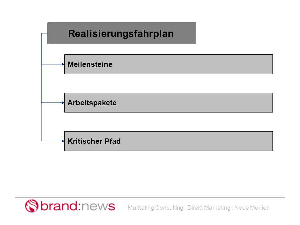 Marketing Consulting : Direkt Marketing : Neue Medien Realisierungsfahrplan Meilensteine Arbeitspakete Kritischer Pfad