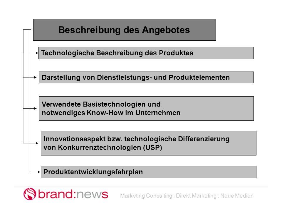 Marketing Consulting : Direkt Marketing : Neue Medien Beschreibung des Angebotes Technologische Beschreibung des Produktes Darstellung von Dienstleist