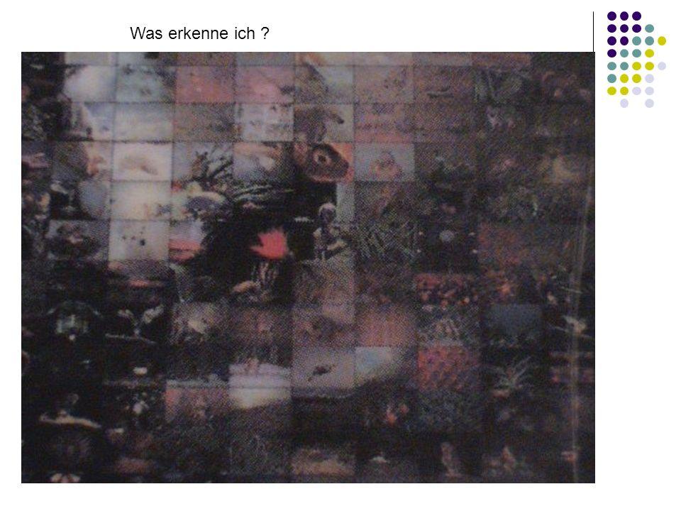 ad libertatem vocati estis (Gal. 5,13) Was erkenne ich ?