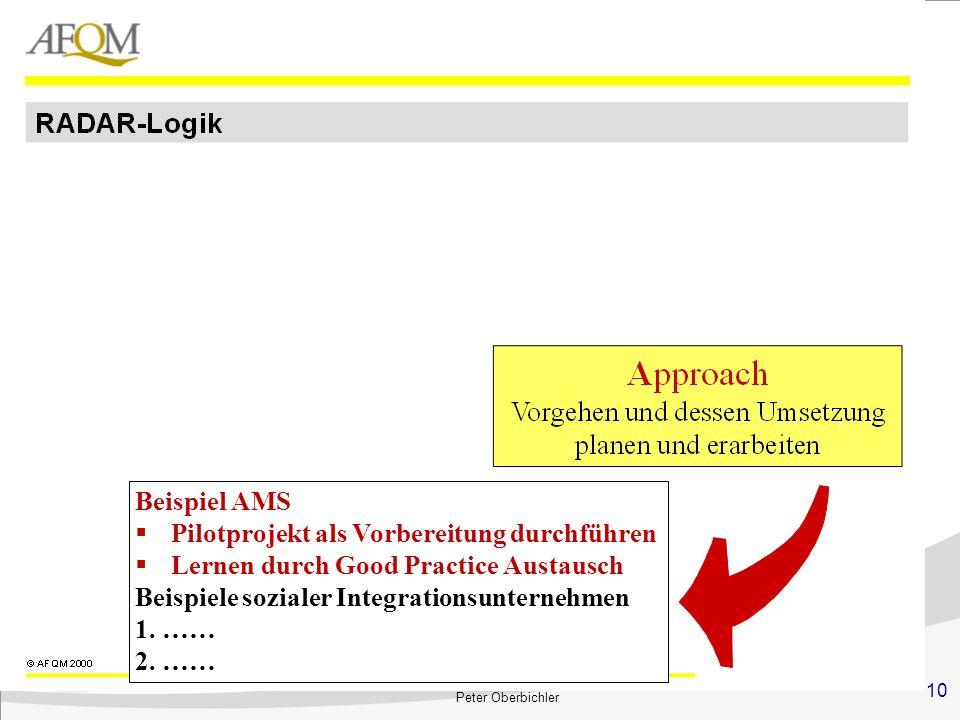 10 Peter Oberbichler Beispiel AMS Pilotprojekt als Vorbereitung durchführen Lernen durch Good Practice Austausch Beispiele sozialer Integrationsuntern