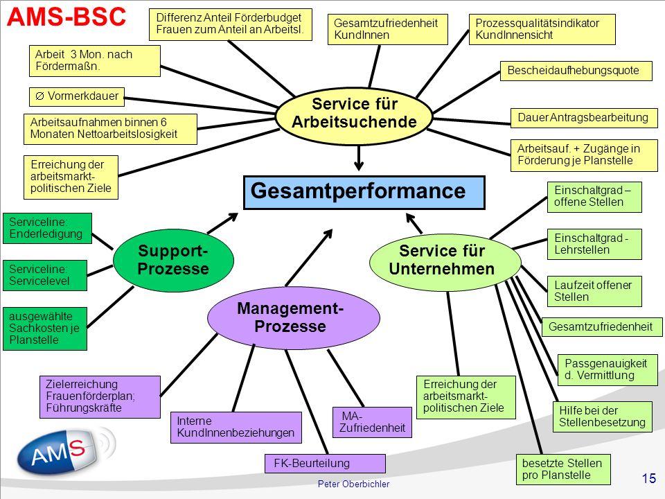15 Peter Oberbichler Gesamtperformance Service für Arbeitsuchende Support- Prozesse Management- Prozesse Arbeit 3 Mon. nach Fördermaßn. Gesamtzufriede