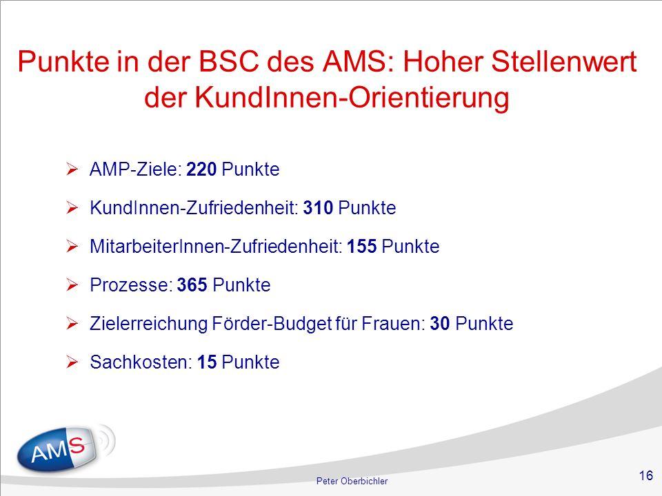 16 Peter Oberbichler Punkte in der BSC des AMS: Hoher Stellenwert der KundInnen-Orientierung AMP-Ziele: 220 Punkte KundInnen-Zufriedenheit: 310 Punkte