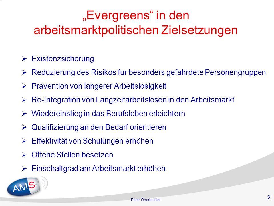 2 Peter Oberbichler Evergreens in den arbeitsmarktpolitischen Zielsetzungen Existenzsicherung Reduzierung des Risikos für besonders gefährdete Persone