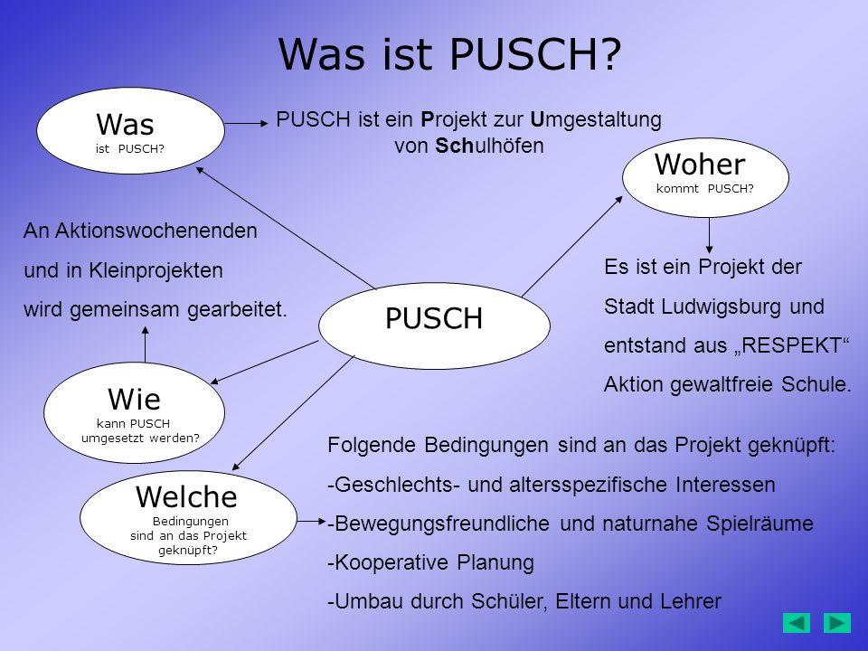 PUSCH Was ist PUSCH? Woher kommt PUSCH? Welche Bedingungen sind an das Projekt geknüpft? Was ist PUSCH? PUSCH ist ein Projekt zur Umgestaltung von Sch