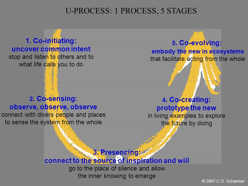 1. Co-initiating: uncover common intent stop and listen to others and to what life calls you to do 2. Co-sensing: observe, observe, observe connect wi
