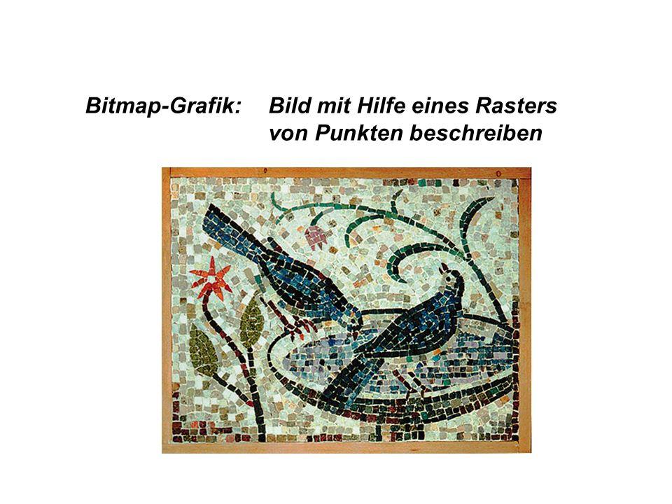 Bitmap-Grafik:Bild mit Hilfe eines Rasters von Punkten beschreiben