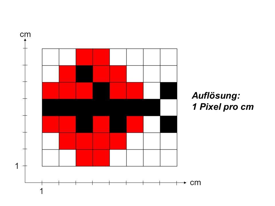 1 1 cm Auflösung: 1 Pixel pro cm